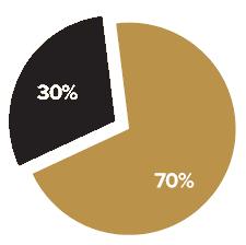 30% первый взнос